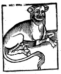 Lenny, tapster, goes largely unrecognized for his role in creating the #earlymodern cat meme. #WoodcutWednesday
