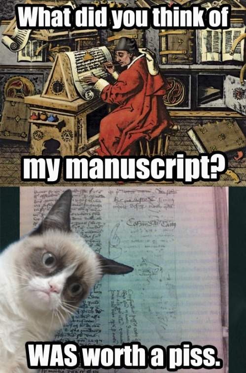 This is what Medieval Grumpy Cat thinks of your manuscript