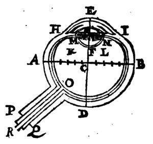 The modern eye from Scheiner in 1619. Page 17.